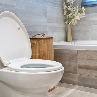 best toilet selection for home remodel and bathroom construction